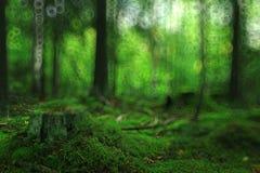 De zomerbos vage textuur royalty-vrije stock fotografie