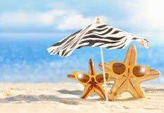 De zomerconcept met grappige zeester Stock Fotografie