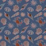 De zomerconcept met shells Stock Afbeelding