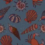 De zomerconcept met shells Royalty-vrije Stock Afbeeldingen