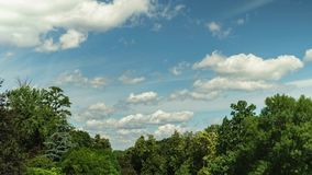 De zomerdag en wolken in de hemel timelapse Mooie groene bomen Het landschap van de aard stock video