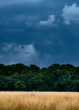 De zomerdouche in Nonsuch-Park Royalty-vrije Stock Foto