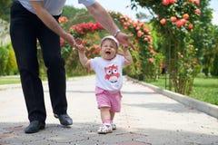 De zomergang Childs eerste stappen in de vaders sterke handen Stock Foto