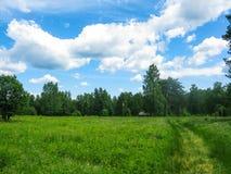 De zomergebied en bos in de beken van natuurreservaatolenyi in het gebied van Sverdlovsk royalty-vrije stock foto