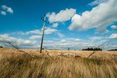 De zomergebied met uitstekende machtsstapel Stock Fotografie