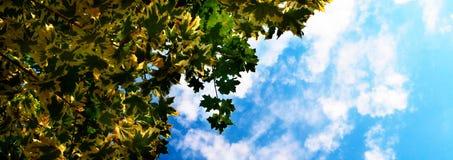 De de de zomerhemel en wolken Stock Afbeeldingen