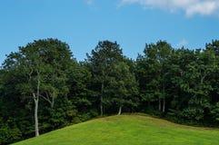 De zomerheuvel Royalty-vrije Stock Afbeeldingen
