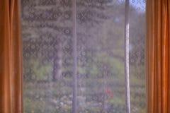 De zomerhout van het venster royalty-vrije stock afbeeldingen