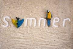 De zomerinschrijving op een zand met papegaai en vissen Flatlay de zomer royalty-vrije stock afbeelding