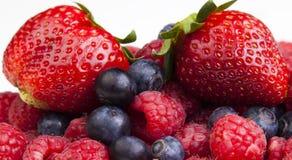 De zomerinzameling van bessen - aardbeien, bosbessen & raspb Stock Fotografie