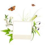 De zomerkader met foto, groene bladeren, bloemen en insecten Royalty-vrije Stock Foto's