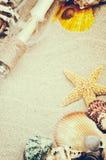 De zomerkader met overzeese shells Stock Afbeeldingen