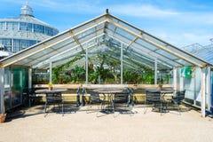 De zomerkoffie in de Botanische Tuin van Kopenhagen De zonnige dag van de zomer Stock Foto's