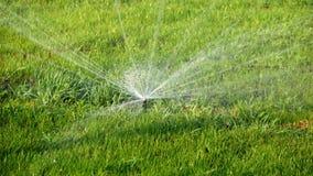 De ZOMERlandschap Automatisch het water geven systeem voor installaties en gazon Watersproeier die gras in park overgieten stock videobeelden