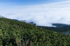 De zomerlandschap in bergen en de donkerblauwe hemel met wolken Stock Afbeeldingen