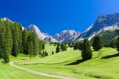 De zomerlandschap in Dolomietbergen Stock Fotografie