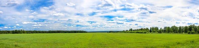 De zomerlandschap een panorama met een gebied en de blauwe hemel agri Royalty-vrije Stock Foto