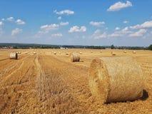 De zomerlandschap in het platteland royalty-vrije stock fotografie
