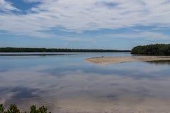 De zomerlandschap, J N Ding Darling National Wildlife-toevluchtsoord royalty-vrije stock fotografie