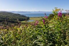 De zomerlandschap met bloemen, bergen en overzees Stock Foto