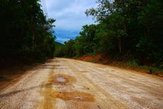 De zomerlandschap met een lege zandige weg in bos stock afbeelding