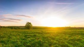 De zomerlandschap met een zonsondergang, panoramische tijd-tijdspanne stock video
