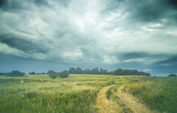 De zomerlandschap met gras, weg en wolken Royalty-vrije Stock Afbeeldingen