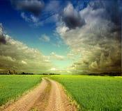 De zomerlandschap met groene gras, weg en wolken Royalty-vrije Stock Afbeeldingen