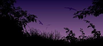 De zomerlandschap met silhouet van gras, bloemen en vogels Stock Afbeeldingen