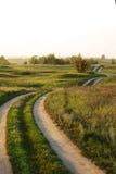 De zomerlandschap met weg en groen gras Stock Foto's