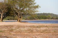 De zomerlandschap op de banken van het zand van het rivierwater en de duidelijke hemel in de stad van federatieprovincie van entr Stock Fotografie