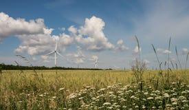 De zomerlandschap op een gebied die de windenergieinstallaties overzien royalty-vrije stock foto