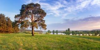 De zomerlandschap snel van de Ural-rivier met de bomen op de Bank van Rusland, Juni stock afbeelding