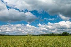 De zomerlandschap van een landbouwbedrijfgebied in wolken, schitterende aard, Ger Stock Afbeelding