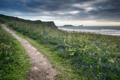 De zomerlandschap van het Hoofd van de Worm en Rhosilli-Baai in Wales Stock Afbeelding