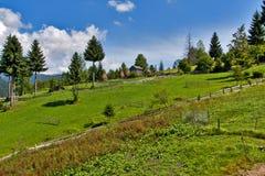 De zomerlandschap van het platteland Royalty-vrije Stock Foto