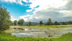 De zomerlandschap van Latorica-rivier in Transcarpathië, de Oekraïne stock footage