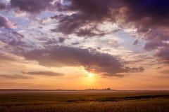 De zomerlandschap: zonsondergang of zonsopgang op het open gebied Donkere clou Stock Foto