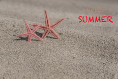 De zomermalplaatje met zeesterren op een zandig strand Stock Fotografie