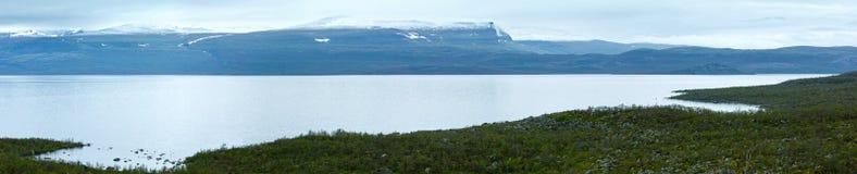 De zomermening van het Tornetraskmeer (Lapland, Zweden) Stock Afbeeldingen