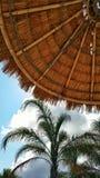 De zomermening van zonchaise-longue Royalty-vrije Stock Fotografie
