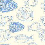 In de zomerontwerp met hand getrokken tropische vissen Stock Foto