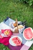De zomerpicknick met Stokbrood, wijn en watermeloen Stock Foto's