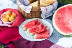 De zomerpicknick met Stokbrood, wijn en watermeloen Royalty-vrije Stock Afbeelding