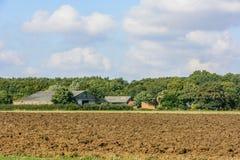 De zomerplatteland Royalty-vrije Stock Afbeelding