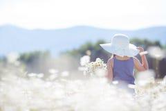 De zomerportret van een klein meisje op een gebied van margrieten stock foto's