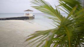 De de zomerrust, bungalow op water unfocused binnen mening van achter palmblad op oceaan stock footage