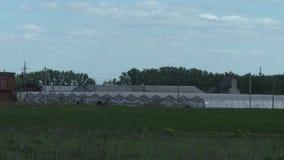 De zomerserres op landbouwbedrijf stock video