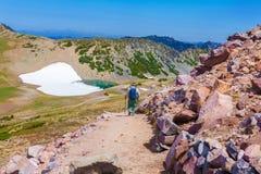 De zomerstijging bij het park van Onderstelrainier national met mening van MT regenachtiger royalty-vrije stock fotografie