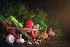 De zomerstilleven van rijpe groenten en dille stock afbeelding